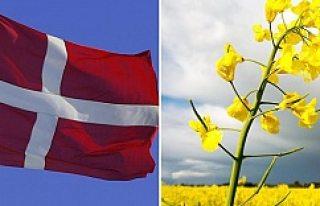 Danimarka, Kopenhag'ı büyütmek için resmen...