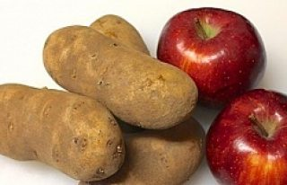 Elmayı patatesin yanına koyun bakın ne oluyor!