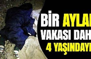 İstanköy'de ikinci Aylan vakası