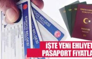 İşte yeni ehliyet ve pasaport fiyatı