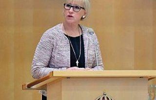 İsveç 1915 olayları hakkında komisyon kuruyor