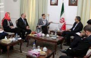 İsveç Dışişleri Bakan Yardımcısı ile İranlı...