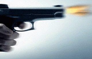 İsveç'te vurularak öldürülenler sayısında...