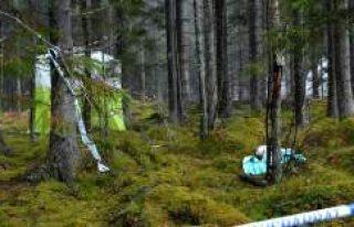 İsveç'te yürüyüşe çıkan kadın öldürüldü