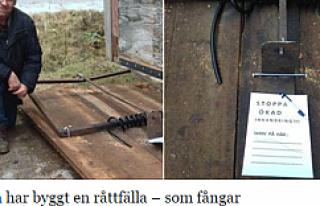 İsveç'e göçmenleri istemeyenlere fare tuzağı...