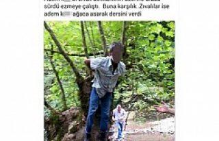 Kayınpederini kaçırıp dövdü, ağaca bağlı...