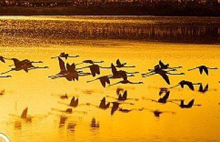 Küçük Göl'den muhteşem görüntüler