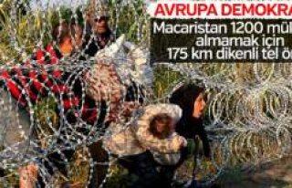 Macaristan'ın mülteci korkusu: Sınıra jiletli...