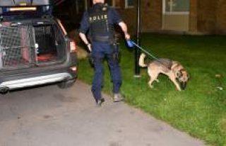 Malmö'de silahlı saldırı: 1 kişi yaralandı