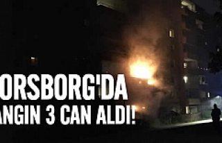 Norsborg'da çıkan yangın 3 can aldı