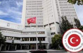 Norveç'in Ankara Büyükelçisi, Dışişleri'ne...
