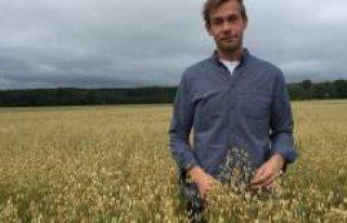 """""""Wow, hiç inek yok"""": İsveçli çiftçi süt..."""