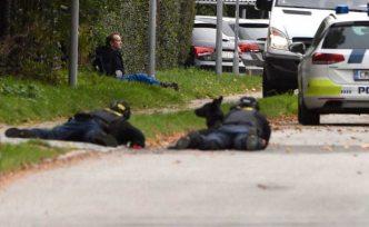 İsveçli gazeteciyi öldüren katil hapisten kaçmaya çalıştı
