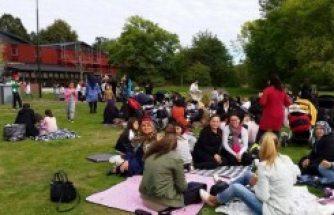 Fittja'da ailelerin piknik buluşması