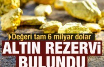 Türk şirketine ait maden sahasında 3,5 milyon onsluk altın rezervi bulundu