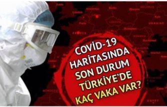 Türkiye'de veriler oldukça iyi: İşte son durum!