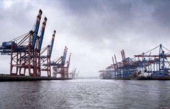 Limana demir atan gemiden 1,5 ton kokain çıktı
