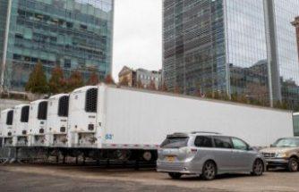 COVID-19 kabusu: Yüzlercesinin cesedi hala bu kamyonlarda bekliyor