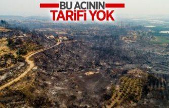 Antalya ve Adana'dan alevlerin ardından yürek yakan manzaralar