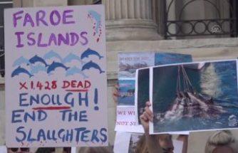 Danimarka'daki yunus katliamı protesto edildi
