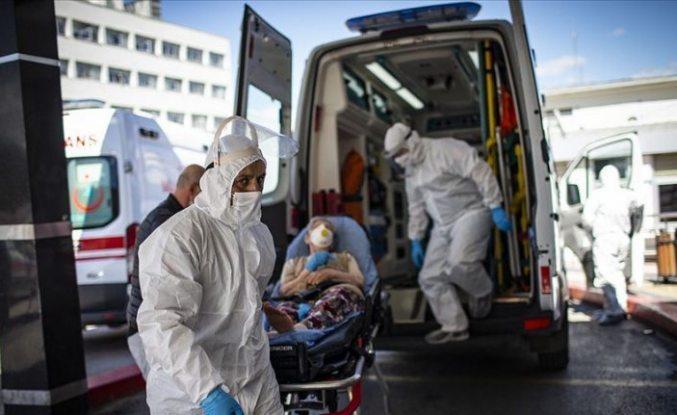 Türkiye'de son 24 saatte 2 bin 319 kişiye Covid-19 tanısı konuldu