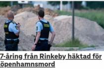 İki kişinin cinayeti ile ile ilgli Rinkeby'den bir genç tutuklandı