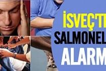 İsveç'te korkunç Salmonella salgını uyarısı