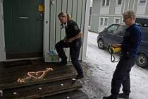 İsveç'te Namus Cinayeti
