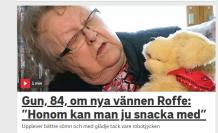 İsveç'te yalnızlığa robot kedi ve köpekli çözüm