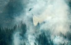 İsveç orman yangınlarıyla mücadele ediyor: Müslümanlar yağmur duasına çıkacak