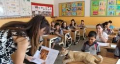 Türkiye'nin fenomen kedisi Tombi karne aldı
