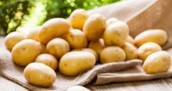 Dikkat! Patatesi dolaba koyarsanız...