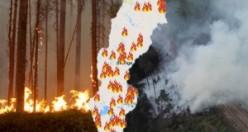 İsveç'in ciğerleri yanıyor