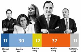 İsveçliler yeni kurulacak hükümeti istiyor mu?