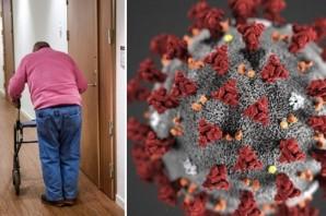 Coronavirüs nedeniyle yaşlı bakım evinde 2 kişi hayatını kaybetti: İsveç'te ölü sayısı 25'e yükseldi