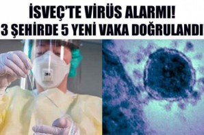İsveç'te virüs yayılmaya başladı! 5 yeni koronavirüs vakası!