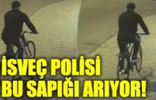 İsveç polisinden yardım çağrısı