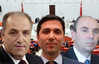 Yeni mecliste Avrupa Türklerini 3 milletvekili temsil...