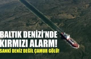 Baltık Denizi'nde kırmızı alarm! 1500 yılın...