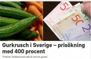 İsveç'te salatalık fiyatları fırladı