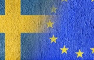 Brexit sürecini gören İsveç'te Swexit isteyen...