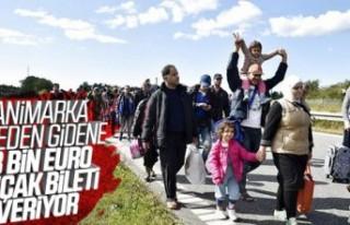Danimarka'dan mültecilere teklif: Para verelim...