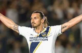 Ibrahimovic'in bahis şirketine 2 milyon 500...