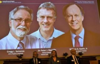 2019 Nobel Tıp Ödülü'nü kazananlar Stockholm'de...