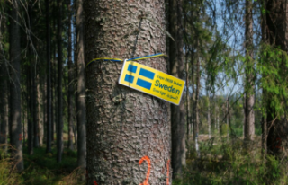 İsveç, ağaç dikme töreniyle Expo 2020 Dubai'de...