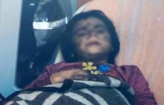 Konya'da iç sızlatan görüntü!