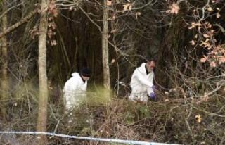 İsveç'te 2017 yılında kaybolan adamın cesedi...