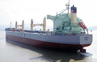 Norveç gemisinden kaçırılan 9 denizci serbest...