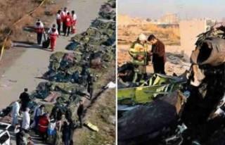 Ukrayna uçağı düştü 17 İsveçli toplam 176...