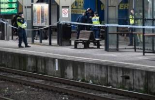 İsveç'te yaşlı kadını trenin önüne atan...